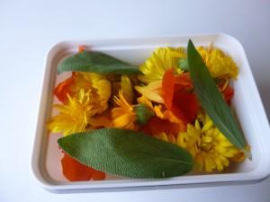 barquette fleurs P1020439