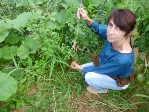 jardin cali cueilletteP1020384