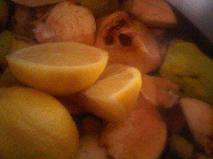2 ajout de citron bio 20151116-05764